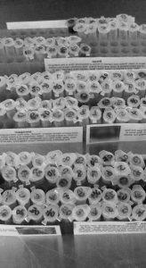 syringe-laboratory-inject-2